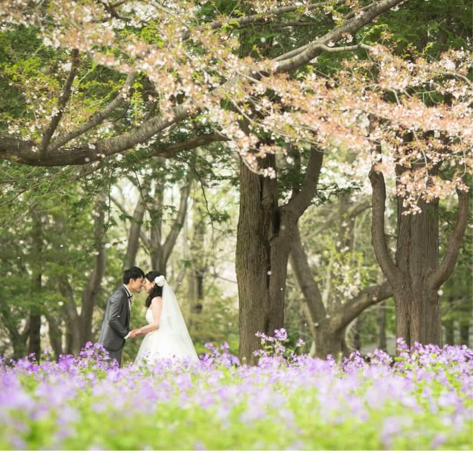 昭和記念公園でフォトウェディング