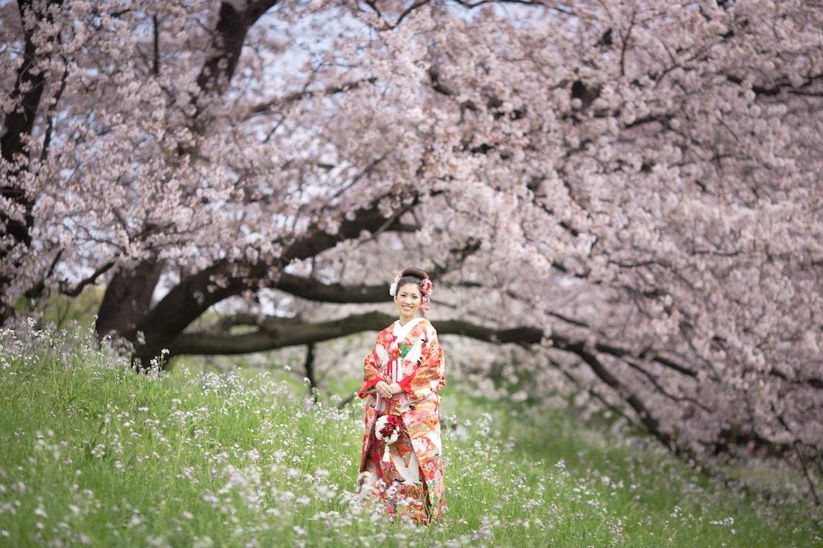 桜フォトウェディング