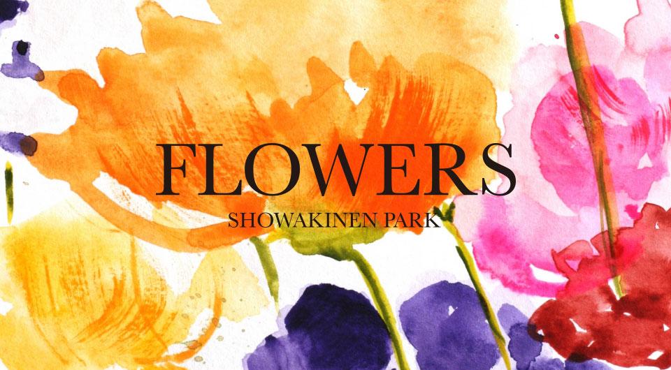 bn_top_slide_flowers
