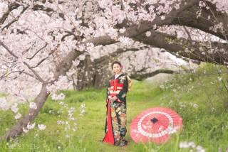 桜 ロケーションフォト