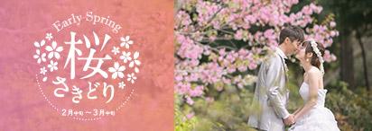 桜さきどり〜早咲きの桜でフォトウェディング