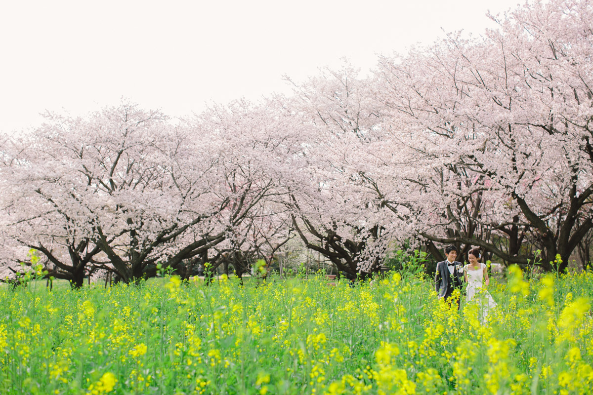 img_portfolio_ishikawa_173