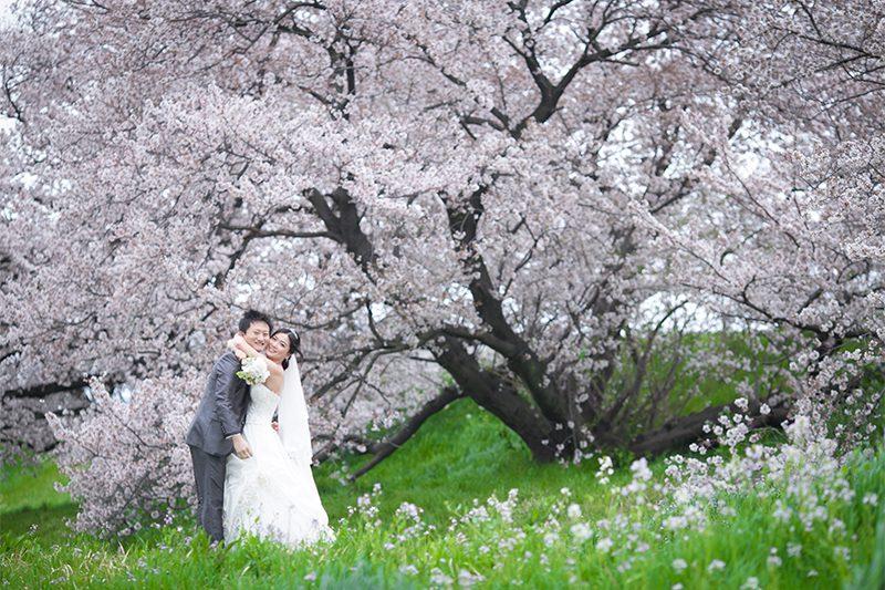 桜の季節に撮るハッピーなウェディングフォトにおすすめのポーズ5つ