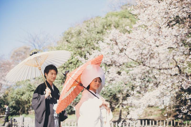 【神奈川編】春に撮るウェディングフォトにぴったりな桜の名所5選
